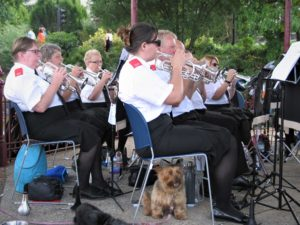 Front and Back Row Cornets at Victoria Park Bandstand